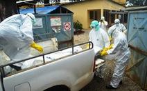 Người sống sót sau khi nhiễm Ebola có thể chết trong vòng 1 năm