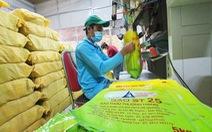 Bộ Nông nghiệp đặc cách công nhận giống lúa thơm ST25 - gạo ngon nhất thế giới