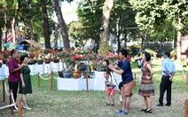Thời tiết tết 2020: TP.HCM nắng nóng oi bức, Hà Nội mưa rét