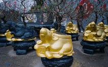 Chuột vàng 'cõng' đào Nhật Tân hút khách ngày cận tết