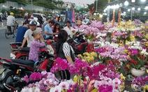 Cận tết, dân Sài Gòn rủ nhau đi 'săn' lan hồ điệp đến khuya