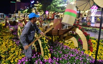 Hoa trên đường hoa Nguyễn Huệ 2020 khoe sắc trước giờ đóng cửa