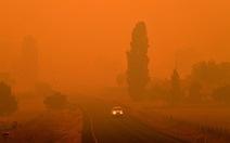 Úc buộc tội 24 người cố tình gây hỏa hoạn giữa thảm họa cháy rừng