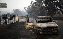 Vì sao cháy rừng khủng khiếp ở Úc?