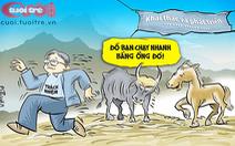 Đàn bò tót lai và tiền ngân sách