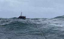 Đà Nẵng còn 8 tàu cá với 79 ngư dân trên biển, vẫn đang tìm kiếm 1 tàu mất tích