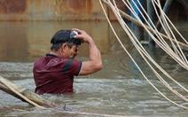 Ngâm mình tìm thi thể người con trong vụ chìm tàu ở Quảng Nam