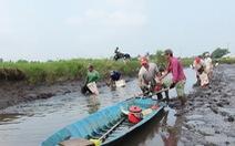 Bạc Liêu mở rộng mô hình con tôm ôm cây lúa ngon nhất thế giới