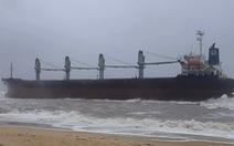 Đang tìm cách cứu tàu hàng cùng 20 người mắc cạn khi tránh bão