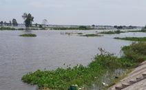Đồng bằng sông Cửu Long: Lũ sẽ xuống chậm trong các ngày tới