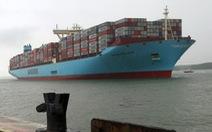 Siêu tàu container dài bằng 4 sân bóng đá cập Cái Mép - Thị Vải