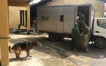 Lực lượng tìm kiếm đưa chó nghiệp vụ trở lại thủy điện Rào Trăng 3