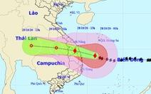 1h ngày 28-10, bão số 9 cách Phú Yên 220 km, giật cấp 16
