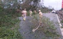 Sau bão, quốc lộ 1 qua Quảng Nam ngổn ngang cây cối