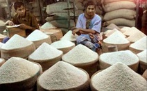 Xuất khẩu gạo của Ấn Độ dự báo tăng kỷ lục trong năm 2020