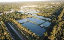 """Xứ dừa Bến Tre biến 'dòng sông đen"""" thành 'dòng sông thơm'"""