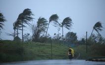 Đối phó bão Vamco, Philippines sơ tán 400.000 cư dân ven biển