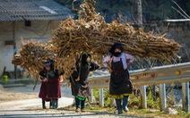 Có nên thu phí để phát triển du lịch cao nguyên đá Đồng Văn?