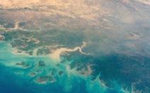 NASA 'nhờ' AI lập bản đồ cây, phát hiện hàng tỉ cây xanh ở hoang mạc