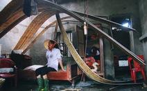 Bàn giải pháp mô hình nhà ở thích nghi với vùng thiên tai