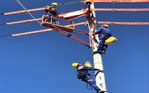 Điện lực Ninh Bình: Một chặng đường giảm tổn thất điện năng