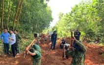 Từ tin báo của người dân, Bình Phước quy tập được 19 hài cốt liệt sĩ