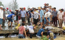 Dân làng chung tay sửa lại đập vỡ, thông đường vào khu vực bị cô lập
