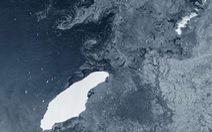 Tảng băng trôi lớn nhất thế giới có thể đâm vào hòn đảo thuộc Anh