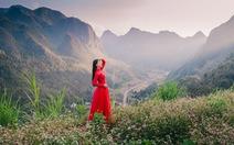 Cao nguyên đá Đồng Văn rực rỡ sắc hoa tam giác mạch