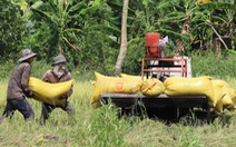 FTA Việt Nam - Anh: Doanh nghiệp Việt bớt 3.500 tỉ tiền thuế/năm