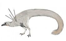 Phát hiện khủng long có 'tóc' và 'ruy băng'