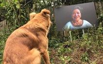 4 nghệ sĩ, nông dân, người bán lẩu dựng đường ảnh Dalat Harmony