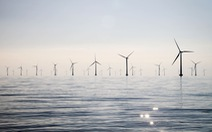 Nhật Bản thúc đẩy phát triển nguồn điện gió biển