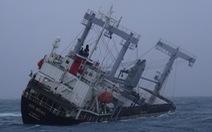 Tìm thấy thêm 1 thi thể vụ tàu chìm ở Phú Quý