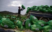 Hàng trăm lao động chui Thái qua đời ở Hàn trong 5 năm, Liên Hiệp Quốc kêu gọi điều tra