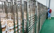 Việt Nam có nhà máy chế biến thịt gà xuất khẩu lớn nhất Đông Nam Á