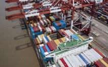 9.000 lít bia, 8.000kg thịt bò Úc bị chặn ở cảng Trung Quốc