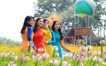 Say ngắm 'vườn hoa Đà Lạt' nở rộ bên sông Sài Gòn