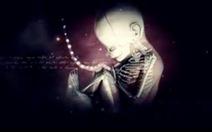 'Bardo - Màu nhiệm của sự sống và cái chết': Lý giải khi chết sẽ về đâu