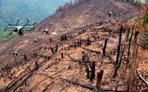 Máy bay không người lái rải hạt giống, trồng lại rừng bị cháy