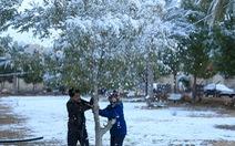 Thời tiết cực đoan, thủ đô Baghdad đón tuyết rơi hiếm có