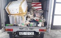 Xe tải chở thịt gà, heo thối đi 'đổ trộm' bị bắt quả tang