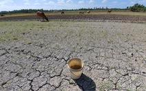 Nhiều nơi ở miền Tây đang hạn, mặn khốc liệt