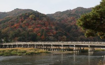 Vượt COVID-19, Kyoto kích cầu bằng chiến dịch 'du lịch vắng'