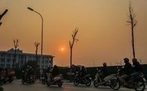 Hàng trăm cây sấu chết khô thảm thương trên đường mới mở ở Hà Nội