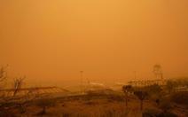 Các sân bay trên quần đảo Canary hoạt động trở lại sau bão cát