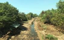Tháng 3 hạn mặn tại Nam Bộ đạt đỉnh, miền Tây thiếu nước ngọt trầm trọng