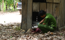 Bắt nhóm cất giấu súng đạn ở khu vực biên giới giáp Campuchia
