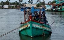 Ba ngư dân thiệt mạng trong hầm tàu câu mực
