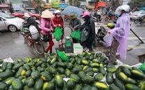 Người Hà Nội mua 'giải cứu' dưa hấu không thể xuất sang Trung Quốc